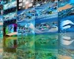 Rapporto Limelight: gli utenti Italiani guardano in media 3h40' di video online al giorno
