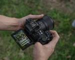Nikon presenta i primi obiettivi macro della serie Z: il 105mm f/2.8 e il 50mm f/2.8